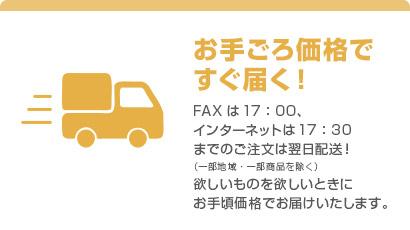 お手ごろ価格ですぐ届く! FAX は17:00、インターネットは17:30 までのご注文は翌日配送!(一部地域・一部商品を除く)欲しいものを欲しいときにお手頃価格でお届けいたします。